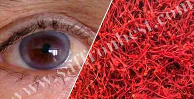 Effects of saffron on eyes